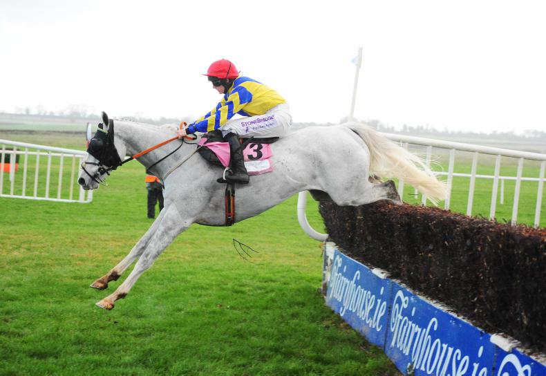 FAIRYHOUSE WEDNESDAY: Blackmore proves her worth in ladies chase