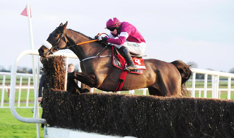 Increased entry for €100,000 Hatton's Grace Hurdle