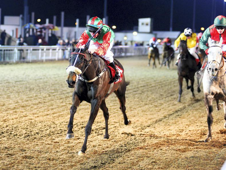 DUNDALK FRIDAY: Good night for Shane Kelly
