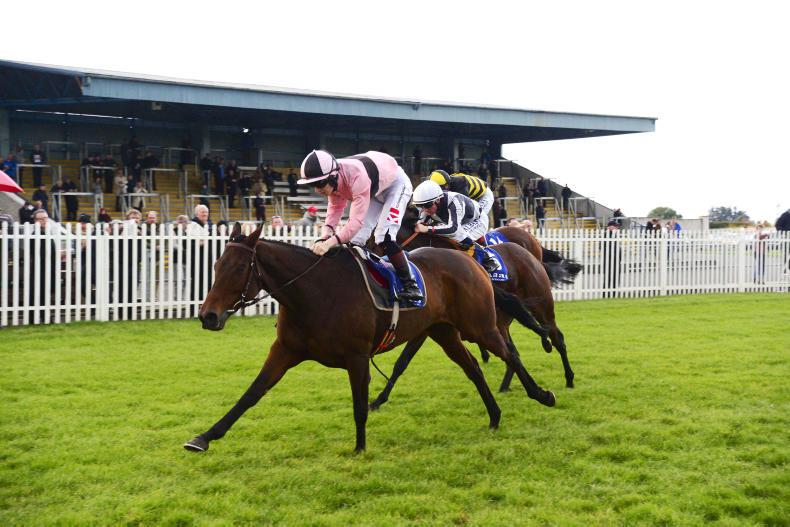 Toe The Line heads over hurdles at Wexford