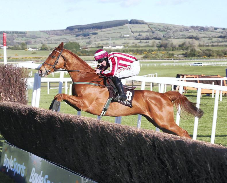 Invitation Only up and running over hurdles at Gowran