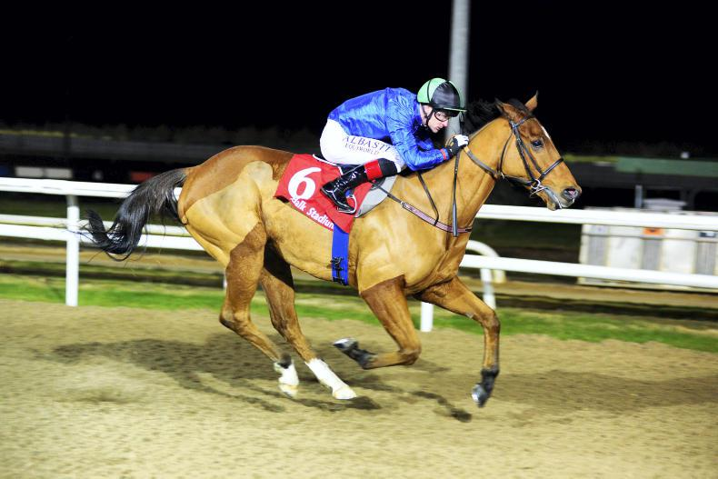DUNDALK FRIDAY: Course specialist Hes Our Music home again