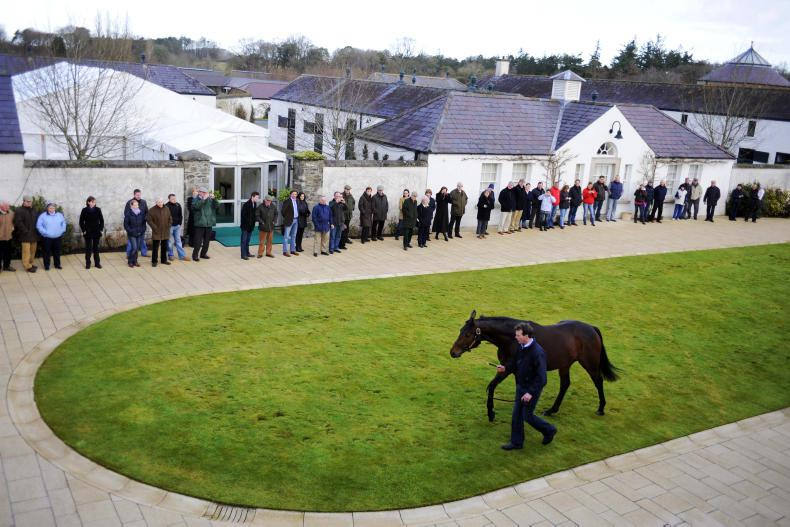 2017 STALLION FEES - The most comprehensive list