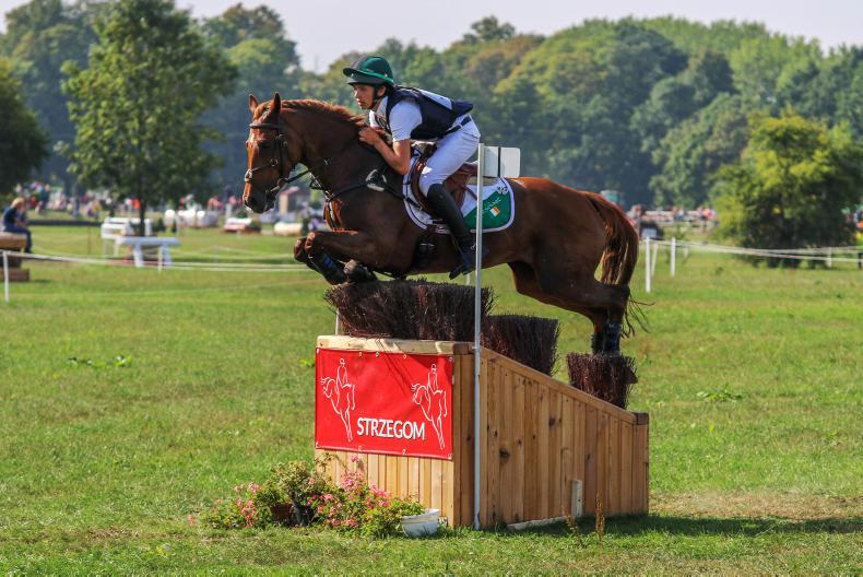 EVENTING TOP 10: Kinsella is year's leading owner