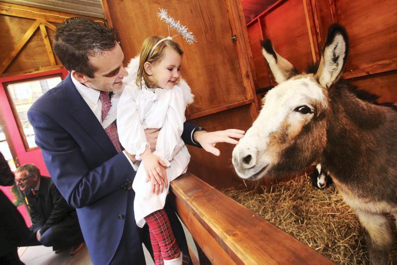 PONY TALES: Live Animal Crib opens