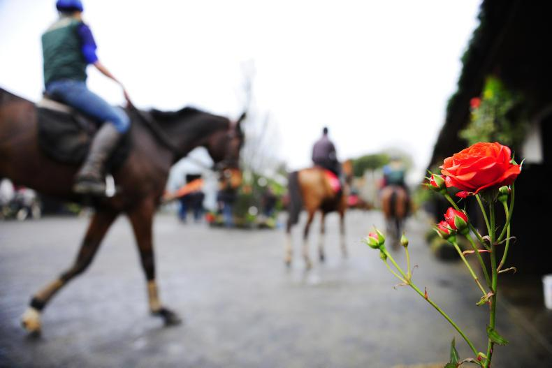 New pay deal for stable staff edges closer