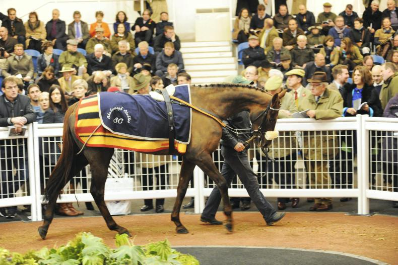 Another point-to-point winner smashes £300,000 mark