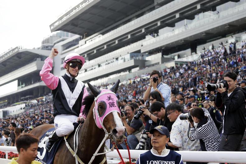 HONG KONG: Irish-foaled winner gains deserved top-flight victory