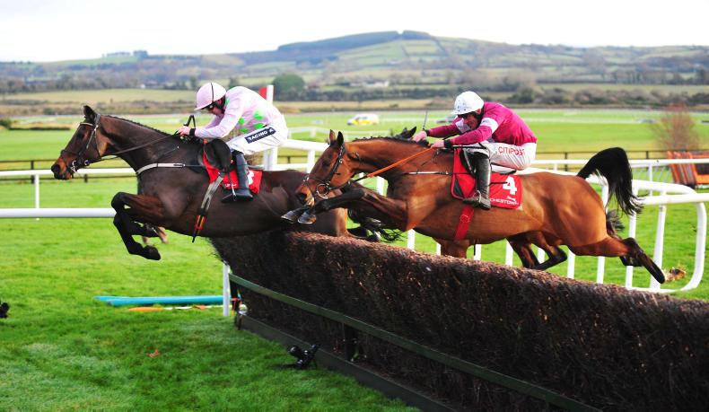 PUNCHESTOWN SUNDAY: Djakadam's quest for gold starts brightly