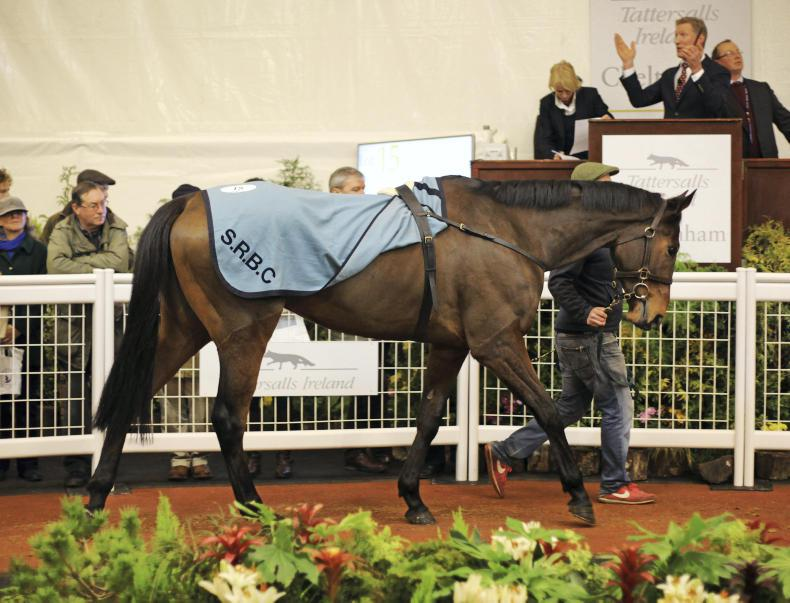 Cheltenham sale year ends with fireworks