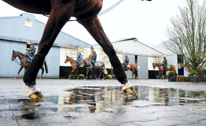 Agreement reached for pay and expenses for Irish stable staff