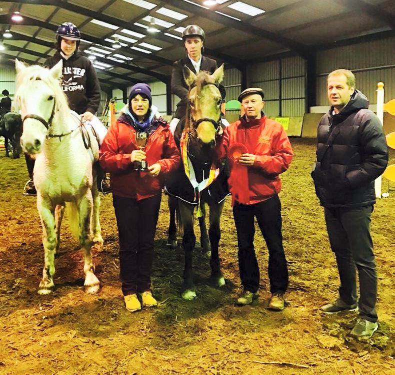 Connemara Pony Breeders' Society Christmas Show