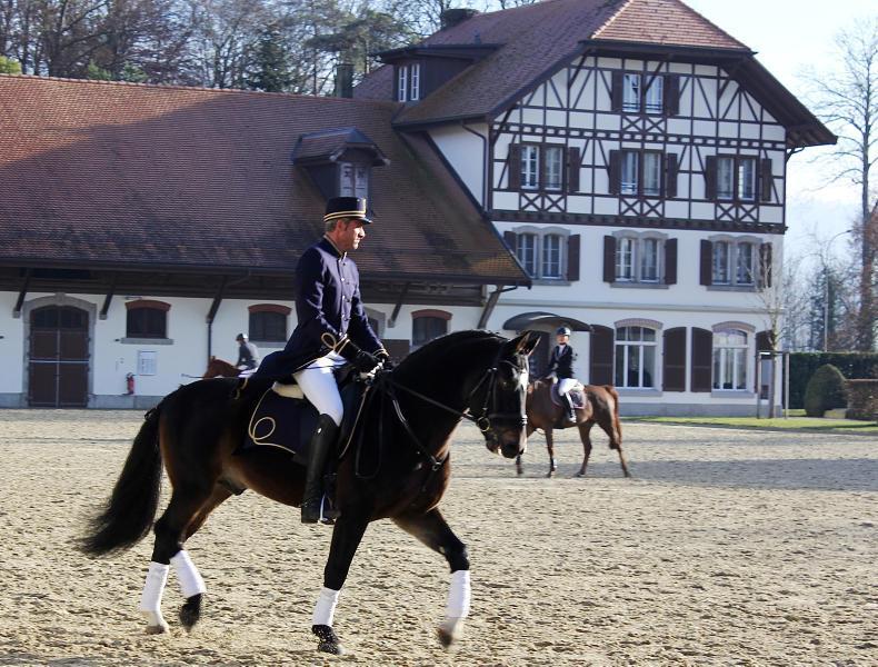 GENEVA INTERNATIONAL HORSE SHOW:  The chocolate connection....