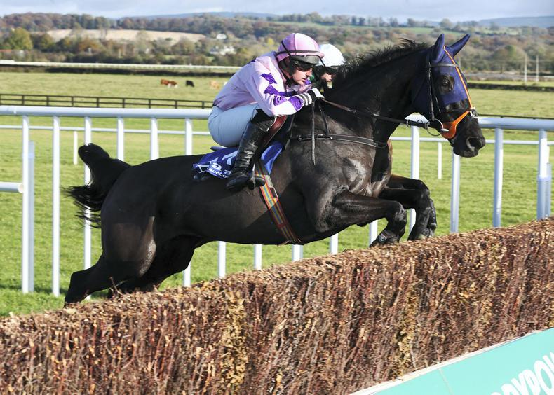 HORSES TO FOLLOW: December 17-18th
