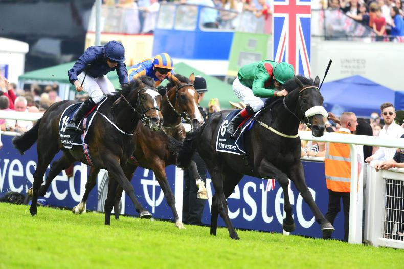 REVIEW OF 2016 - IRELAND: Weld's Derby double