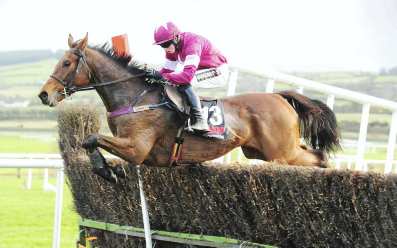 SIMON ROWLANDS: Cue for Kempton and Lido for Lexus