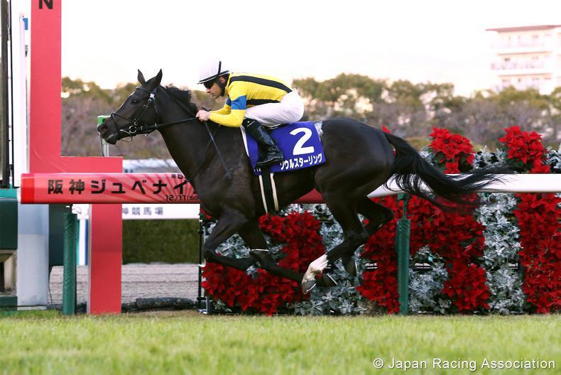REVIEW OF 2016 - JAPAN: A champion sires a champion