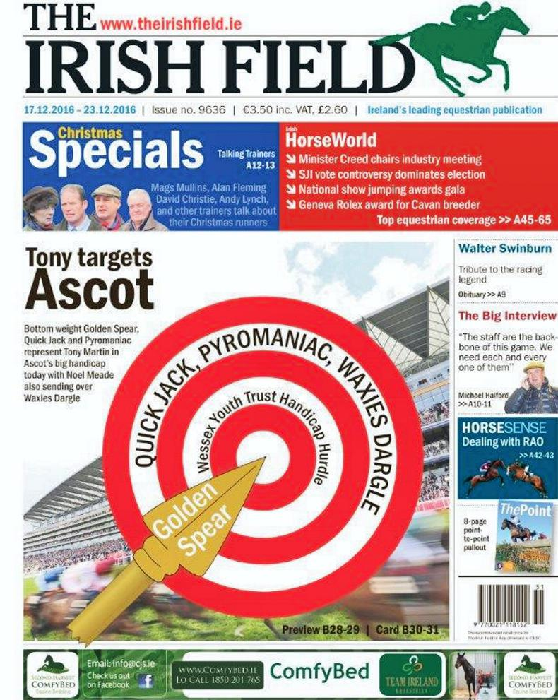 Inside The Irish Field this weekend