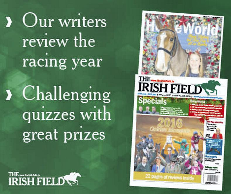 Inside The Irish Field's Christmas bumper edition