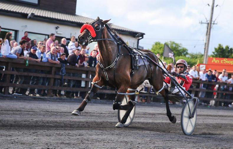 HARNESS RACING:  Mighty Miraculous comes to conquer