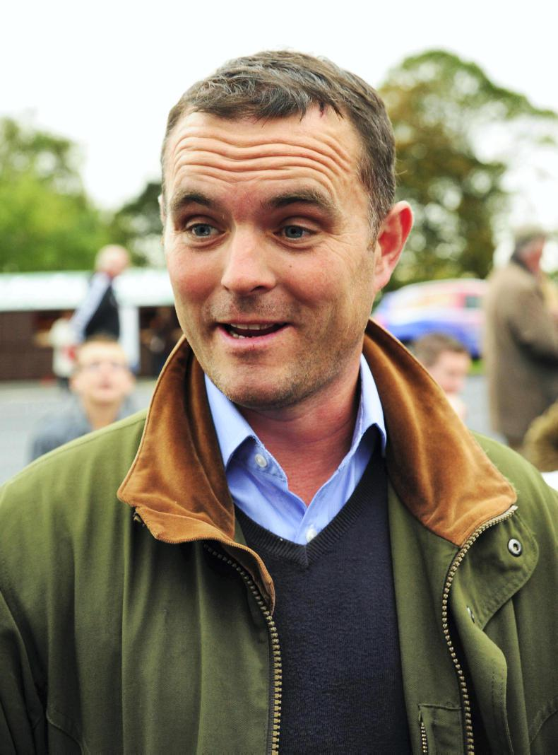 BRITAIN: Pobbles Bay looks a staying chaser to follow