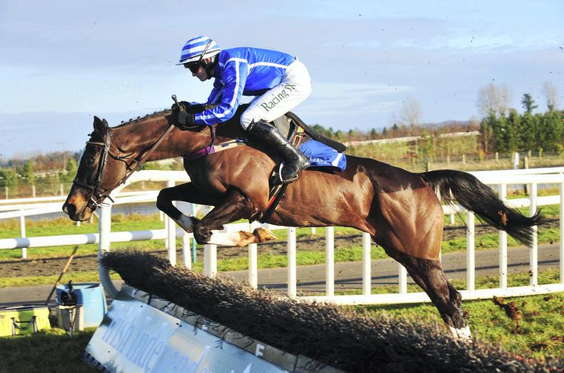 Penhill spearheads Limerick treble for Willie Mullins with Guinness glory