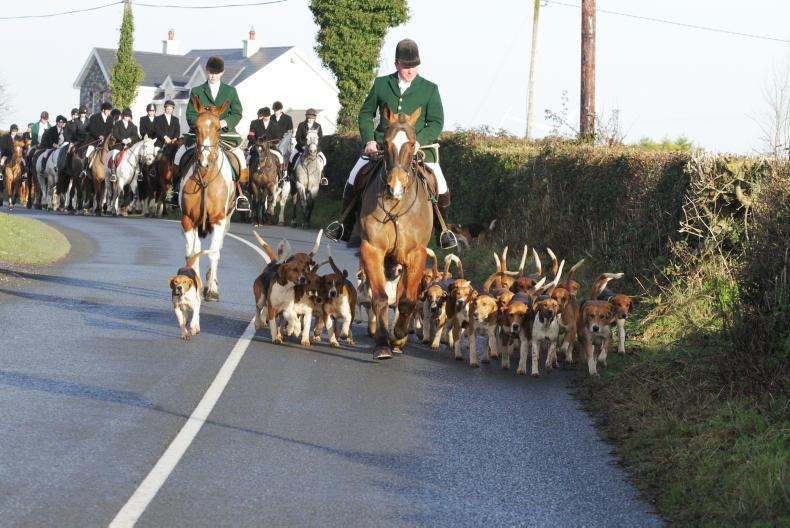 HUNTING:  Foxes galore over smashing country