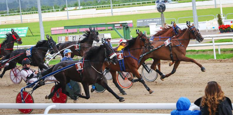 REVIEW OF 2016:  Harness racing gets due recognition