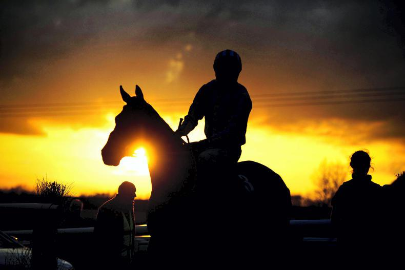 Leading racehorses who died in 2016