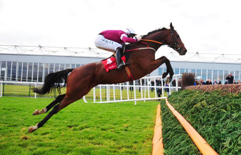 Identity Thief 'getting there' after Leopardstown disappointment