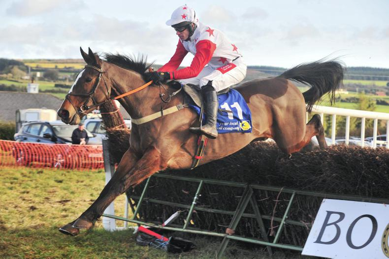 BOULTA SUNDAY - WEST WATERFORD FOXHOUNDS: Ministerforsport impresses