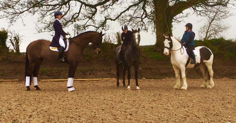 PONY TALES:  Get involved in dressage!