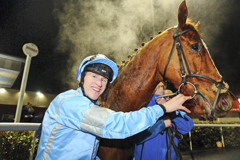 Image result for gary halpin jockey