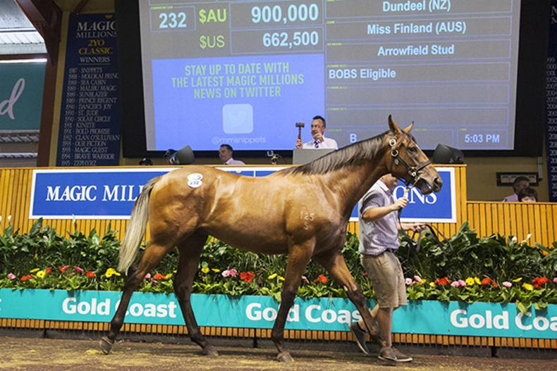 AUSTRALIA: Sebring's brother goes for A€1.3 million