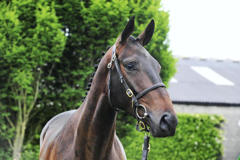 EOGHAIN WARD: Exciting four-year-olds coming to track