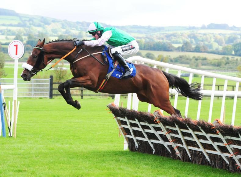 TALKING TRAINERS: Gearing up for a big weekend