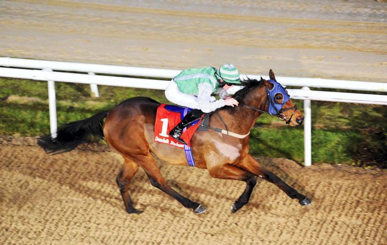 Image result for strategic force horse