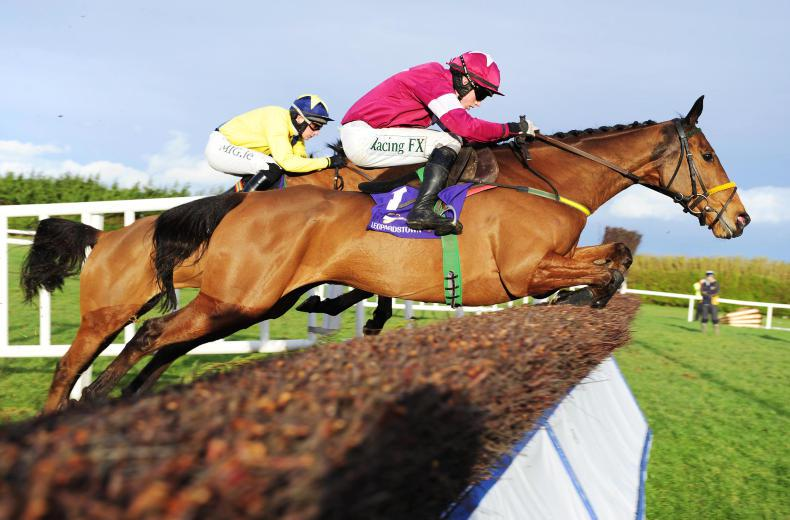 Noel Meade has Road To Riches primed for Irish Gold Cup at Leopardstown