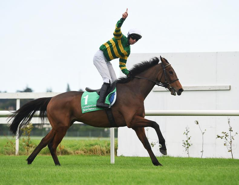 Carlingford Lough aims for third Irish Gold Cup win