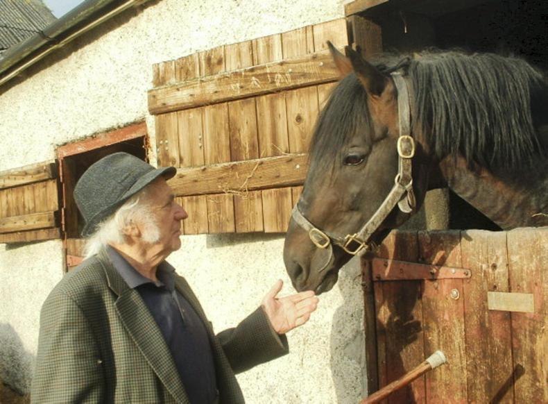 FEATURE:  Irish horses are backbone of British eventing