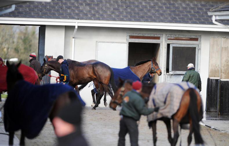 ITBA SEMINAR: Modern-day bloodstock industry requirements