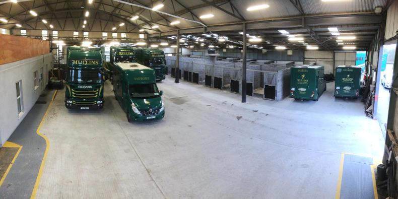 HORSE SENSE TRANSPORT: 'Our horses arrived safe and in excellent condition'