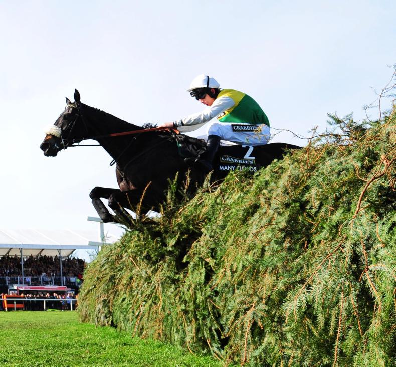 Many Clouds breeder Aidan Aherne pays homage to 'a people's horse'