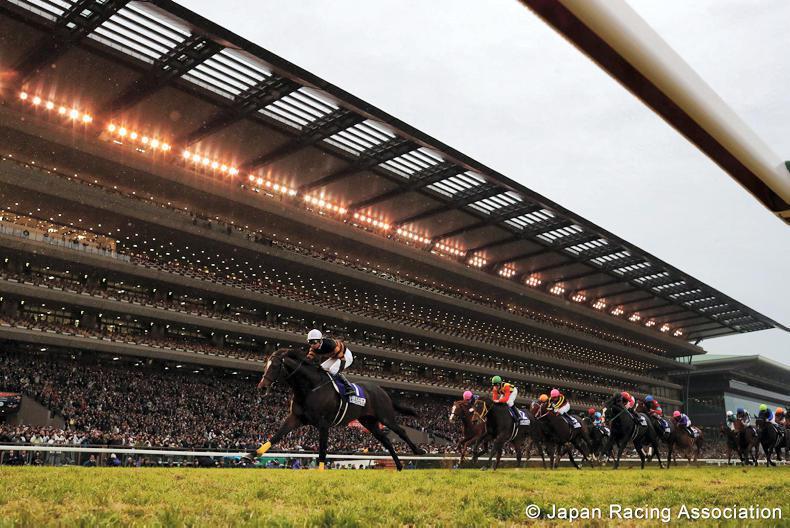 JAPAN: Kitasan Black named Japan's champion horse