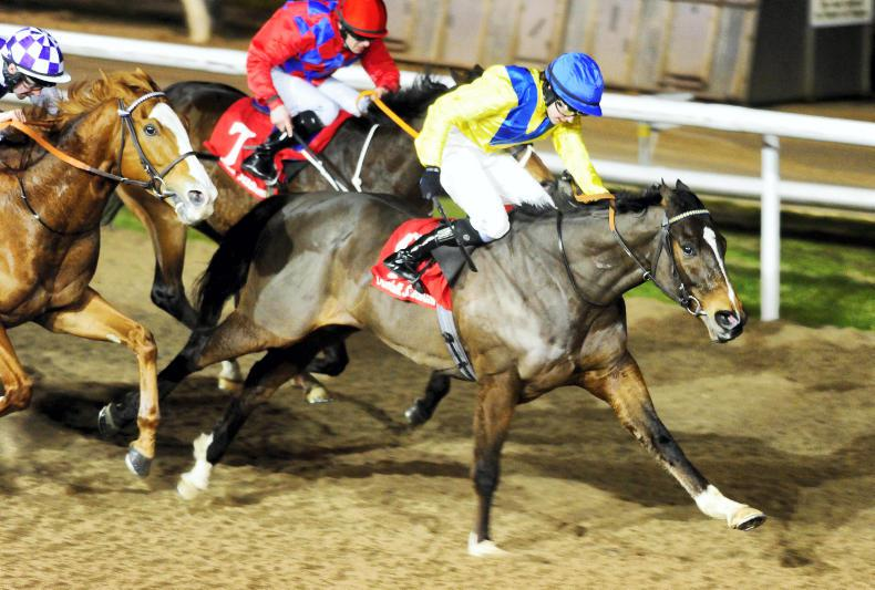 DUNDALK FRIDAY: Geological continues a superb winter for English
