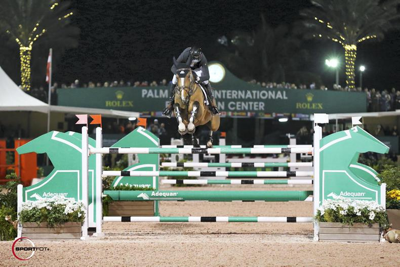 INTERNATIONAL: Lamazing Fine Lady shines again