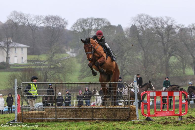 PONY TALES: Successful Tipperary fund-raiser