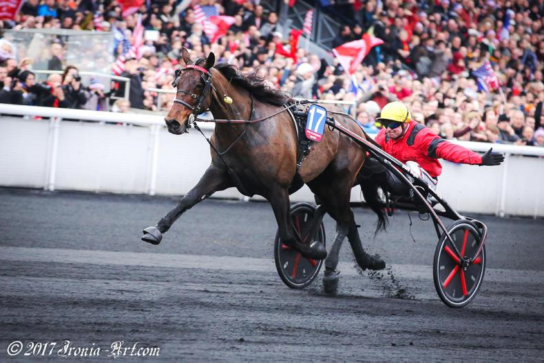 HARNESS RACING: Irish join to salute Bold Eagle