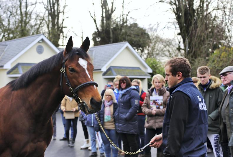 Stallion Trail attracts over 2,000 visitors