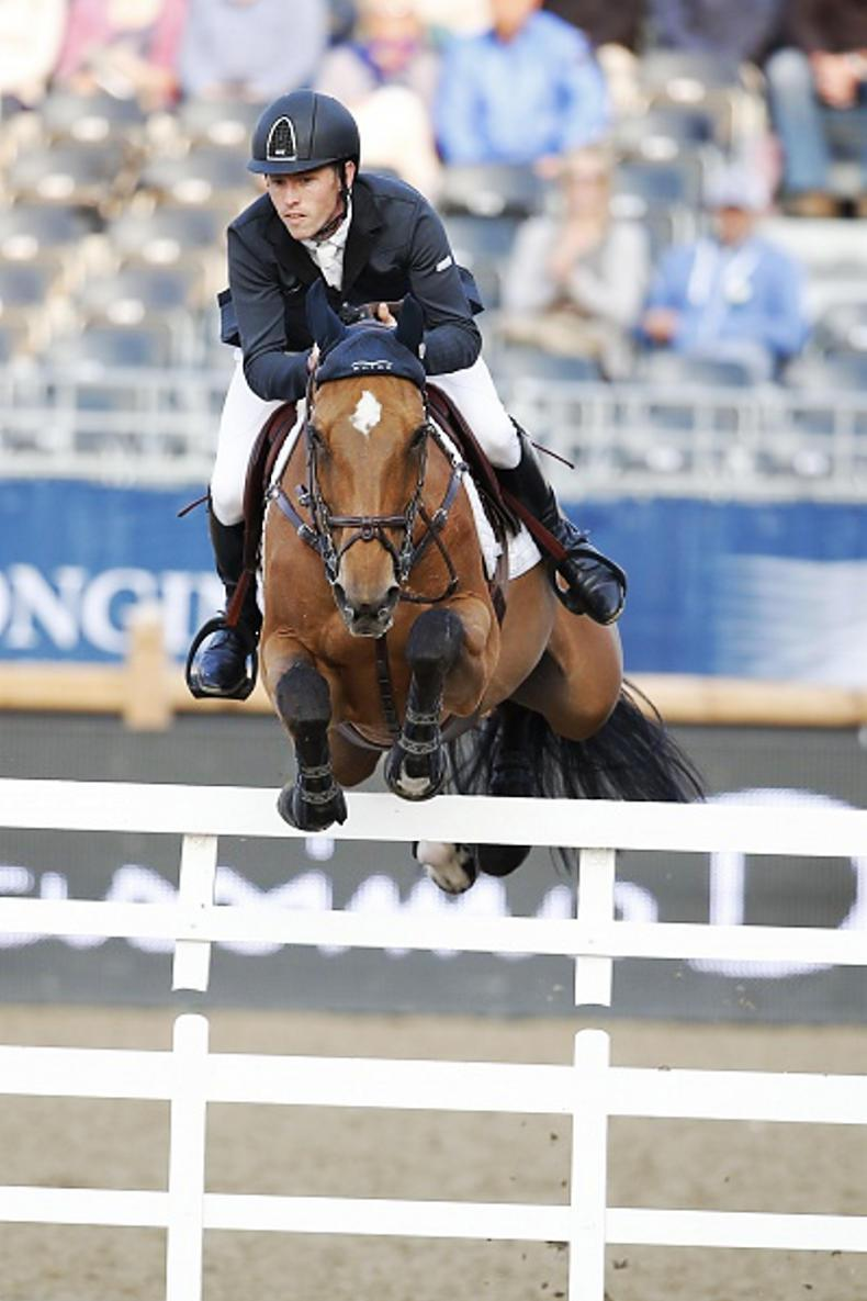 FEATURE: Money talks - top horses commanding big sums